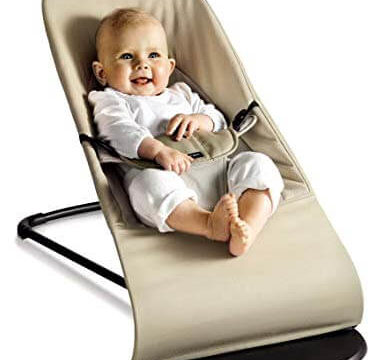 baby bjorn bouncer reviews